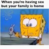 Sponge fuck